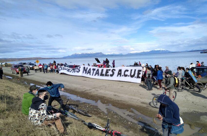 Campaña ciudadana busca llegar a las 5.000 firmas por rechazo a planta industrial de salmones