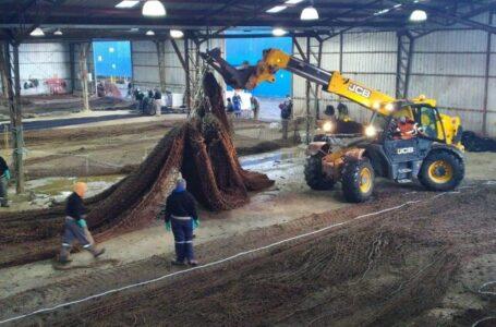 En las cercanías de Natales construirán planta que prestará  servicio a redes de la industria acuícola