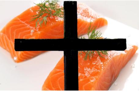 Ecocéanos News. 9 trabajadores han fallecido este año prestando servicios a la industria salmonera