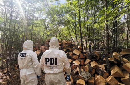 PDI descarta participación de terceros  en fallecimiento de trabajador forestal en Villa Renoval