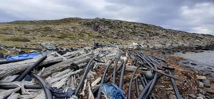 Denuncian ante la SMA y Sernapesca a empresa salmonera por presencia de desechos y material plástico en Península Antonio Varas