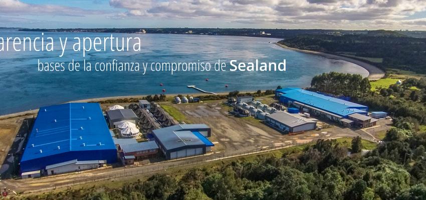 Victoria de comunidad Kawesqar en Patagonia: Corte Suprema anula Permiso Ambiental de una de las mayores piscicultura de salmón a nivel global