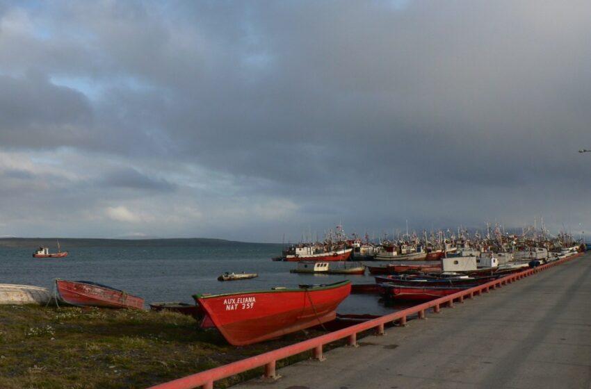 Cuestionan representatividad de candidato Jaime Cosme Ormeño y su vinculación con el sector pesquero artesanal de Magallanes