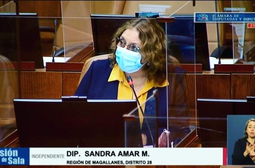 Diputada Amar solicita a la FNE indagar alza sostenida de precios en materiales de construcción