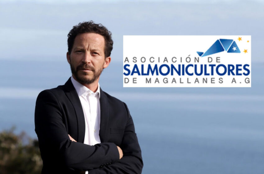 Empresarios salmoneros de Magallanes no se dan por enterados de la prohibición a cultivo de salmón en la Tierra del Fuego Argentina