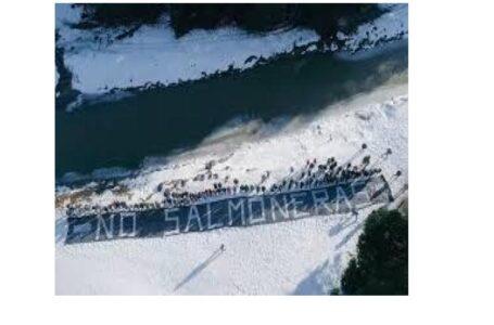 Argentina prohíbe instalación de industria salmonera en Parques Nacionales