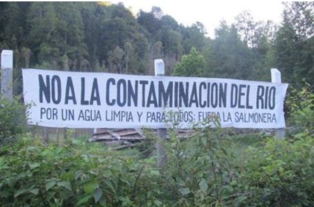Tribunal Ambiental rechaza ampliación de piscicultura salmonera en territorio Mapuche por afectar patrimonio sanitario y turismo de la zona