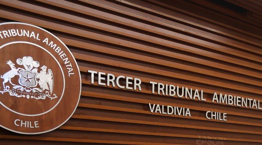 Municipio de Natales cumple con dictamen del Tribunal Ambiental de Valdivia